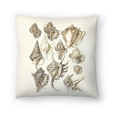 Shells 3 Throw Pillow Size: 16 x 16