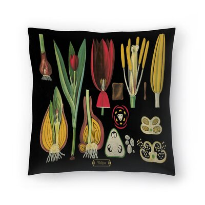 Tulips Throw Pillow Size: 16 x 16
