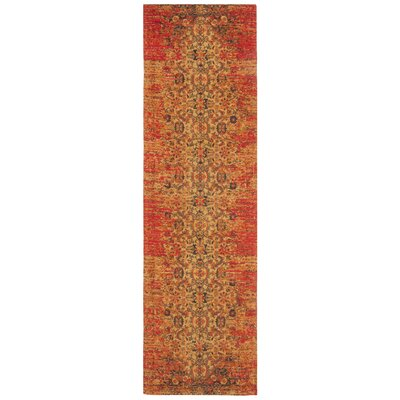 Joselyn Coral Area Rug Rug Size: Runner 23 x 8