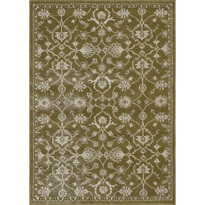 Britley Green Area Rug Rug Size: Rectangle 4 x 57