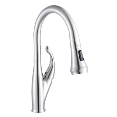 Single Handle Pull Out Kitchen Faucet Finish: Chrome