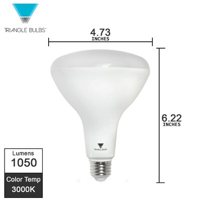 12W E26/Medium (Standard) LED Light Bulb