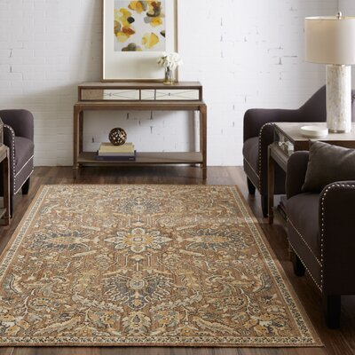 Meagan Taupe Area Rug Rug Size: Rectangle 5 x 8