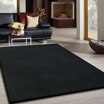 Vinci Hand-Tufted Black Area Rug Rug Size: Rectangle 76 x 103