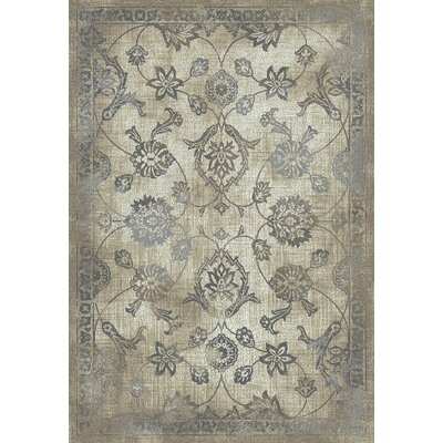 Passyunk Antique Beige/Gray Area Rug Rug Size: Rectangle 5 x 8