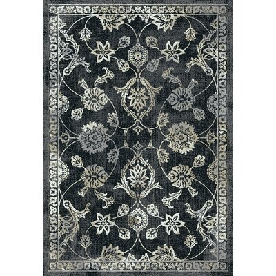 Passyunk Black/Gray Area Rug Rug Size: Rectangle 5 x 8