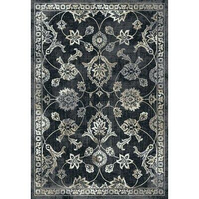 Yannick Black Area Rug Rug Size: Rectangle 53 x 73