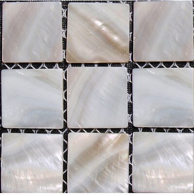 Mesh Mounted 1 x 1 Seashell Tile in Natural