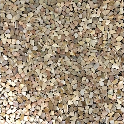 Mesh Mounter 12 x 12 Seashell Mosaic Tile in Natural Mother of Pearl