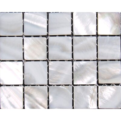 Mesh Mounted 0.625 x 0.625 Authentic Polished Seashell Mosaic Tile in White