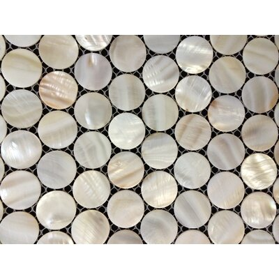 Authentic 1 x 1 Seashell Mosaic Tile in Natural