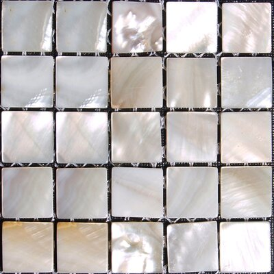 Authentic 0.625 x 0.625 Seashell Mosaic Tile in Natural