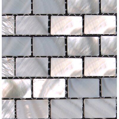 Mesh Mounted 0.5 x 1 Authentic Polished Seashell Mosaic Tile in White