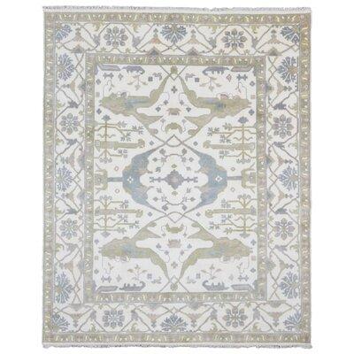 One-of-a-Kind Mitchel Oriental Hand Woven Wool Beige/Blue Area Rug
