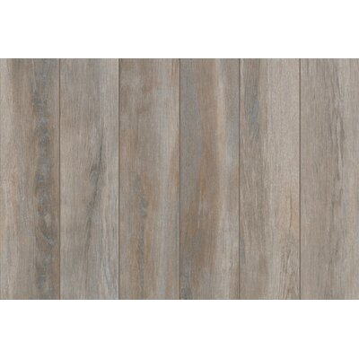 Stanbury Glazed 6 x 24 Porcelain Wood Look Tile in Stormy Gray