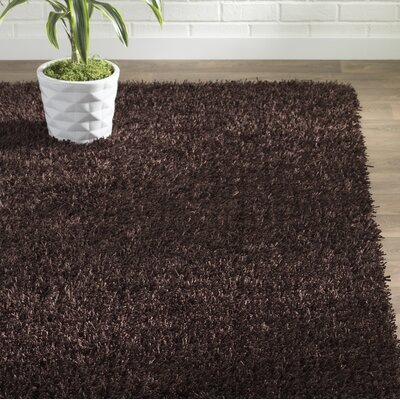 Carrol Chocolate Rug Rug Size: Rectangle 5 x 8