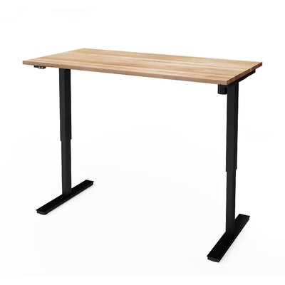 Wardlow 59.3 W Electric Height Adjustable Training Table with Solid Wood Work Surface Size: 30 W x 60 L