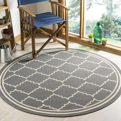 Short Gray/Ivory Indoor/Outdoor Area Rug Rug Size: Round 53