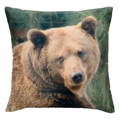 Scouley Bear Throw Pillow