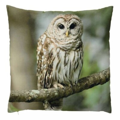 Aleman Owl Throw Pillow