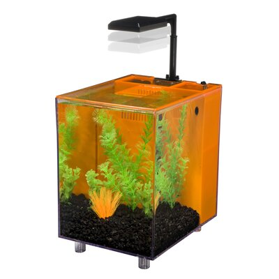 Prism 2 Gallon Desktop Aquarium Tank Color: Orange, Size: 10 H x 9 W x 7 D