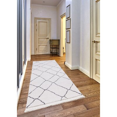 Hervey White/Charcoal Area Rug Rug Size: Runner 23 x 72