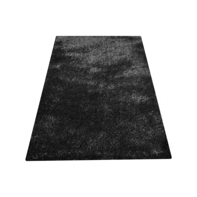 Ry Hand-Woven Black Indoor/Outdoor Area Rug Rug Size: Rectangle�8 x 10