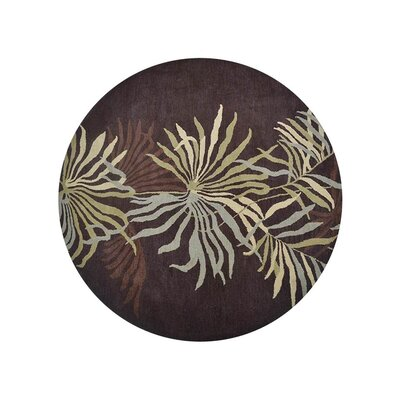 Campas Hand-Tufted Brown Area Rug Rug Size: Round 8