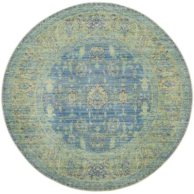 Doline Blue/Yellow Area Rug Rug Size: Round 67