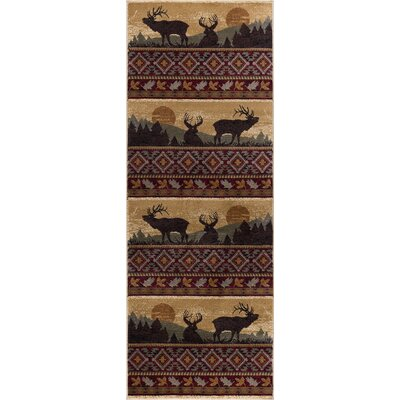 Alers Red/Brown Area Rug Rug Size: Runner 3 x 10