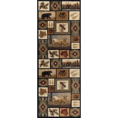 Haddam Brown/Beige Area Rug Rug Size: Runner 3 x 10