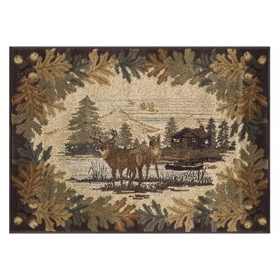 Meyers Brown/Beige Area Rug Rug Size: Rectangle 2 x 3