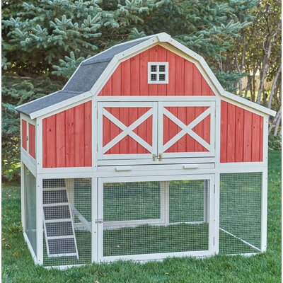 Barn Chicken Coop with Roosting Bar