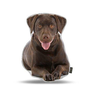 Labrador Chocolate Throw Pillow