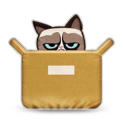 The Box is Better Grumpy Cat Throw Pillow