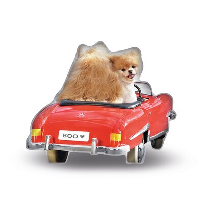 Cool Ride Boo Throw Pillow