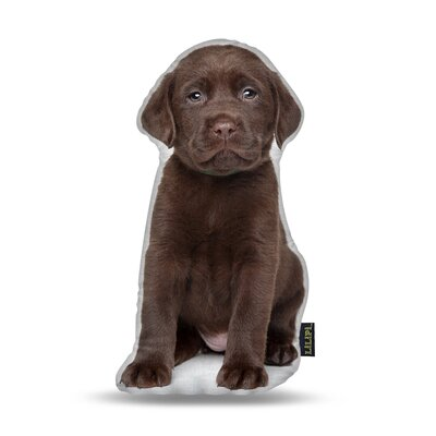 Labrador Chocolate Throw Pillow