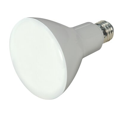 BR30 E26/Medium(Standard) LED Light Bulb Bulb Temperature: 5000K, Lumens: 750