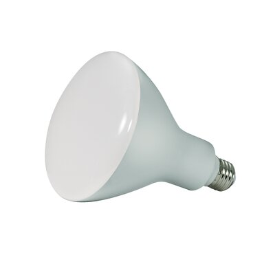 BR40 16.5W E26/Medium(Standard) LED Light Bulb Bulb Temperature: 5000K, Wattage: 12, Lumens: 940