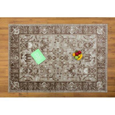 Waldhaus Beige Area Rug Rug Size: Rectangle 53 x 76