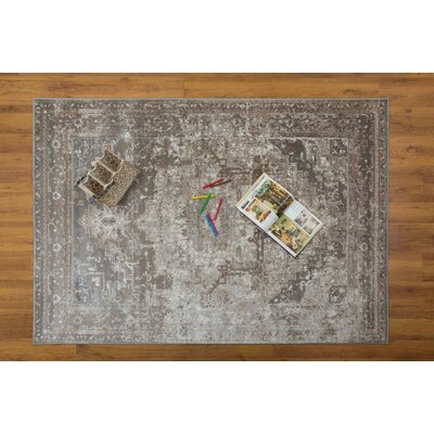 Selimi Gray Area Rug Rug Size: Rectangle 53 x 76