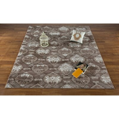 Senaida Brown Area Rug Rug Size: Rectangle 53 x 7