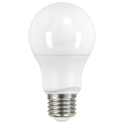 6W E26 Medium Standard LED Light Bulb Bulb Temperature: 3000K