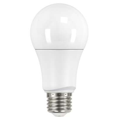 10W E26 Medium Standard LED Light Bulb