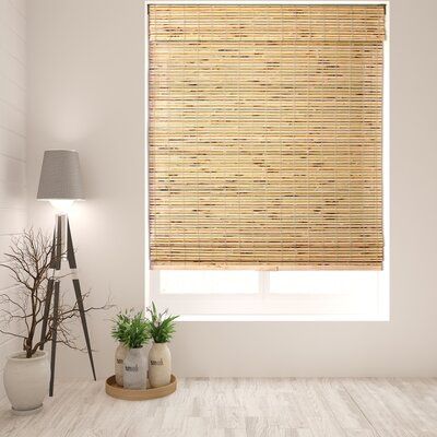 Aymeric Semi-Sheer Brown Roman Shades Blind Size: 34 W x 60 L