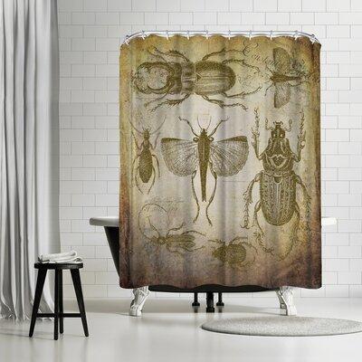Lebens Art Beetle Vintage Shower Curtain