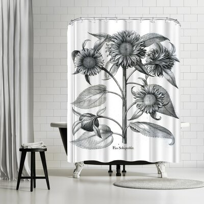 New York Botanical Garden Besler Shower Curtain Color: White/Black/Charcoal-Gray