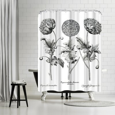 New York Botanical Garden Besler Shower Curtain