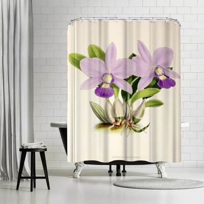 New York Botanical Garden Fitch Orchid Cattleya Walkeriana Shower Curtain