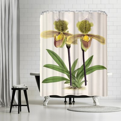 New York Botanical Garden Fitch Orchid Cypripediuminsigne Shower Curtain